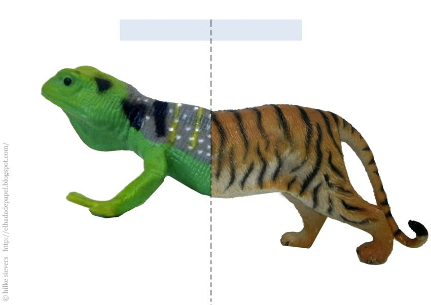 Crazy mixed up animals pdf printables funny animals
