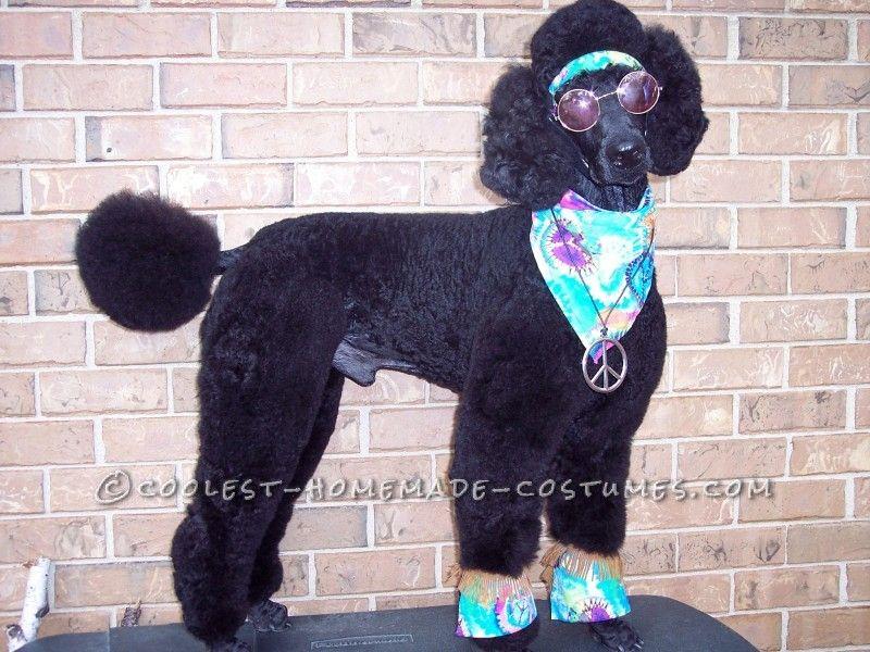 great pet dog halloween costume howl o hippie - Dog Halloween Ideas