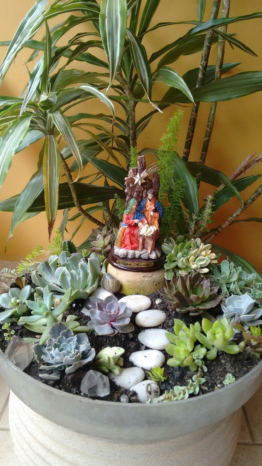 Jardim Natividade