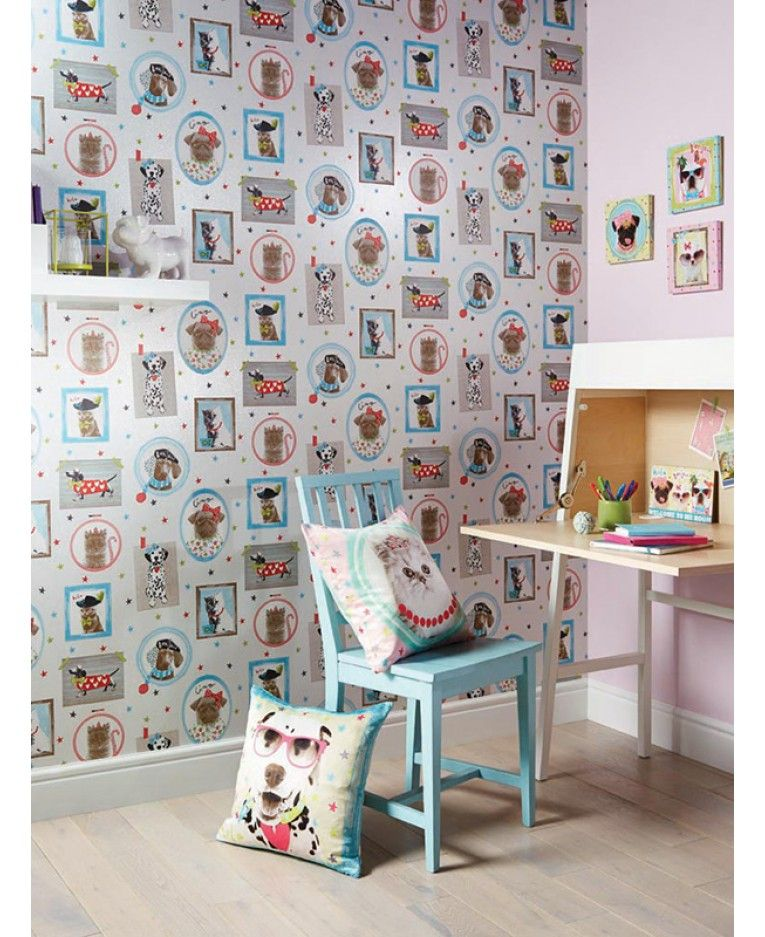 an adorable animal themed wallpaper features cute cats and dogs in frames ideal for girls bedrooms