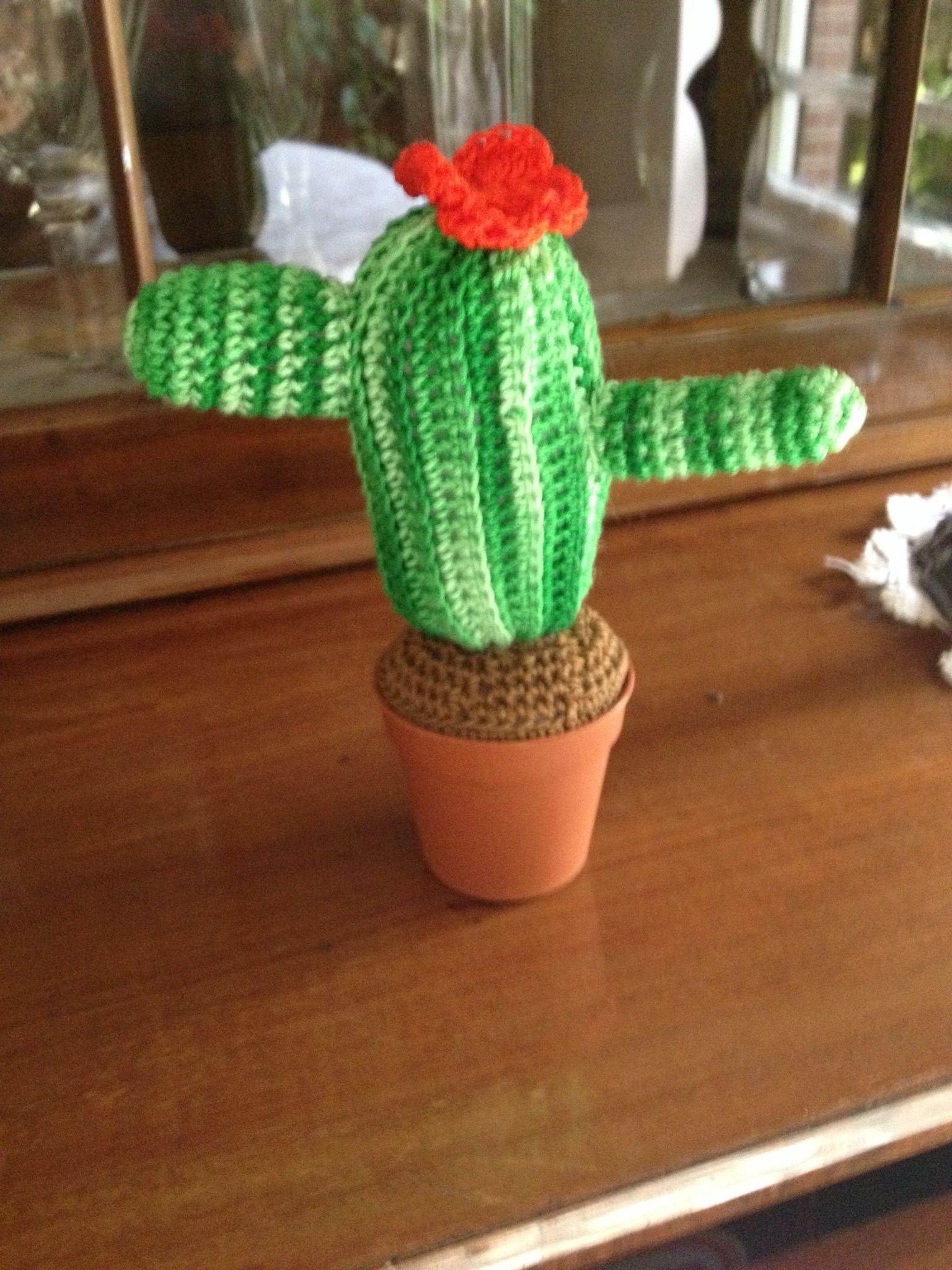 Amigurumi cactus