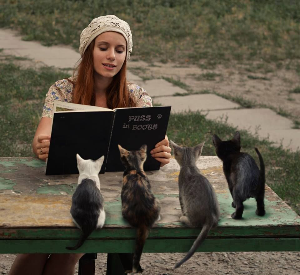 I read to my cats too, and they love it!.