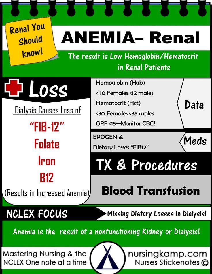 ACUTE RENAL 2 ANEMIA DIALYSIS CRD CKD StickEnotes Nursing KAMP TAB - nephrology nurse sample resume