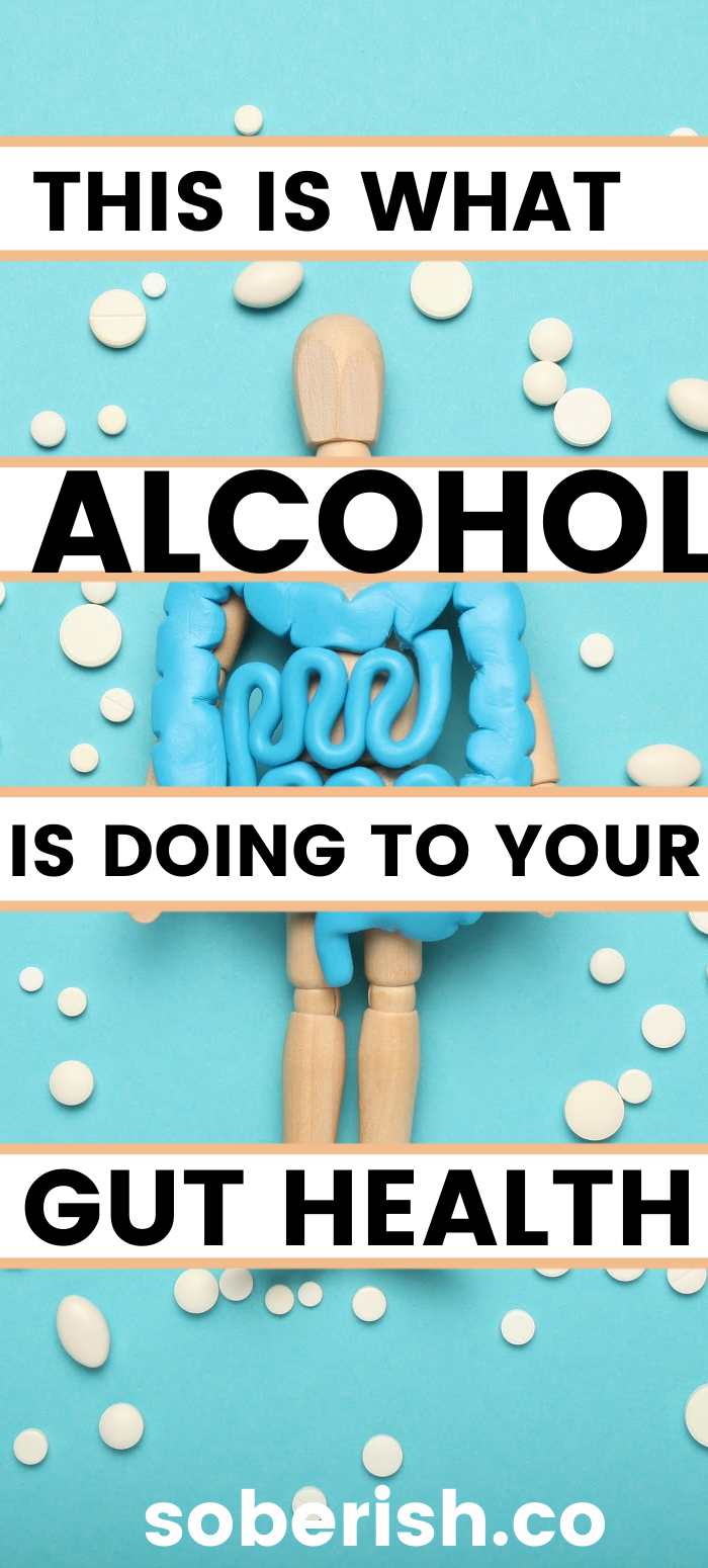 Gut Check How Alcohol Tears Up Your Digestive System Sober Ish In 2020 Sober Life Gut Health Chronic Inflammation
