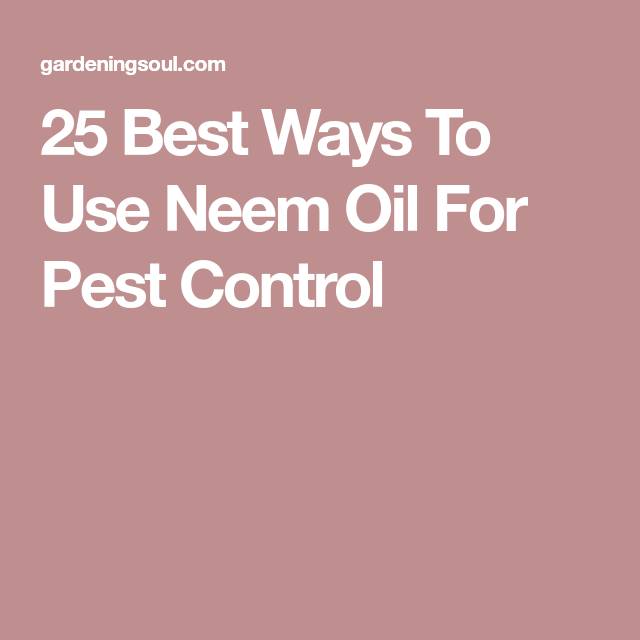 25 Best Ways To Use Neem Oil For Pest Control
