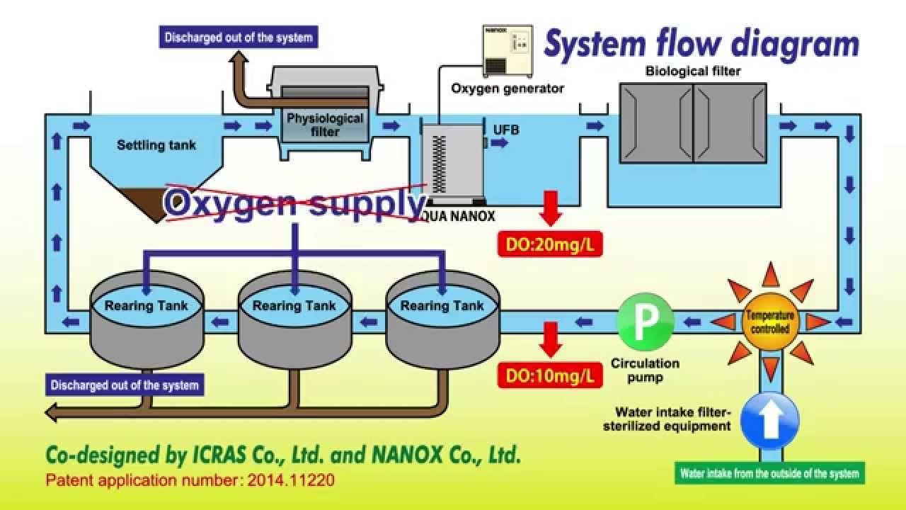 A closed recirculating aquaculture system (CRAS) using oxygenated
