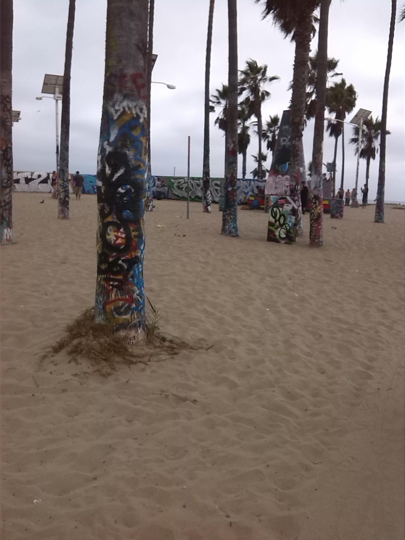Walking around Venice beach.