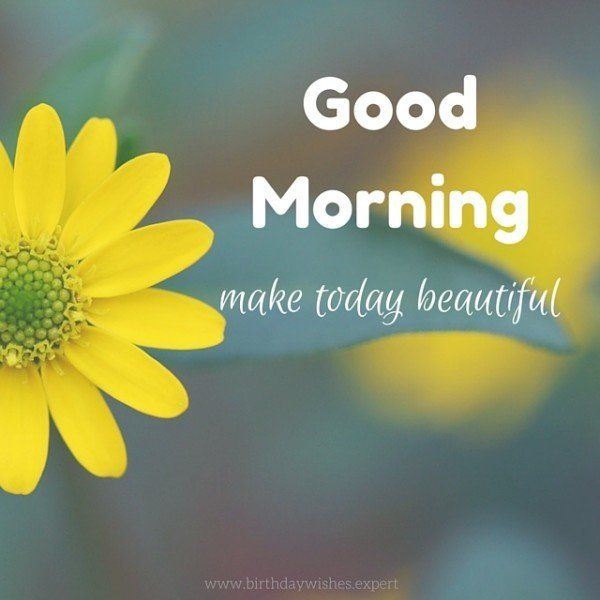 Good Morning Quotes With Nature : Good morning images with the most beautiful flowers