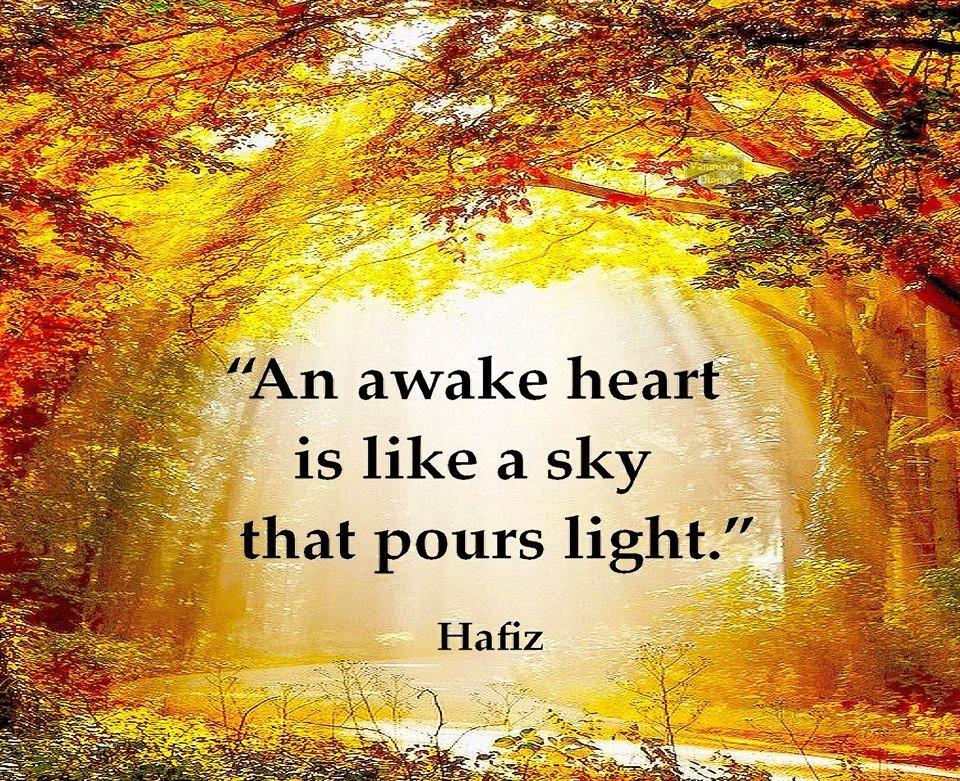 hafiz quotes on gratitude - photo #36