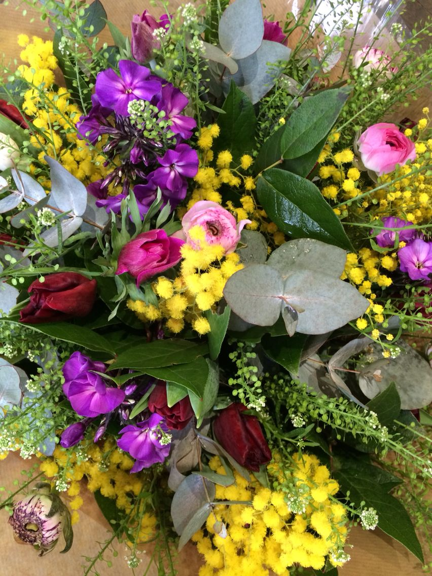 Bright Spring Colours With Mimosa Spring 2015 Pinterest Flower
