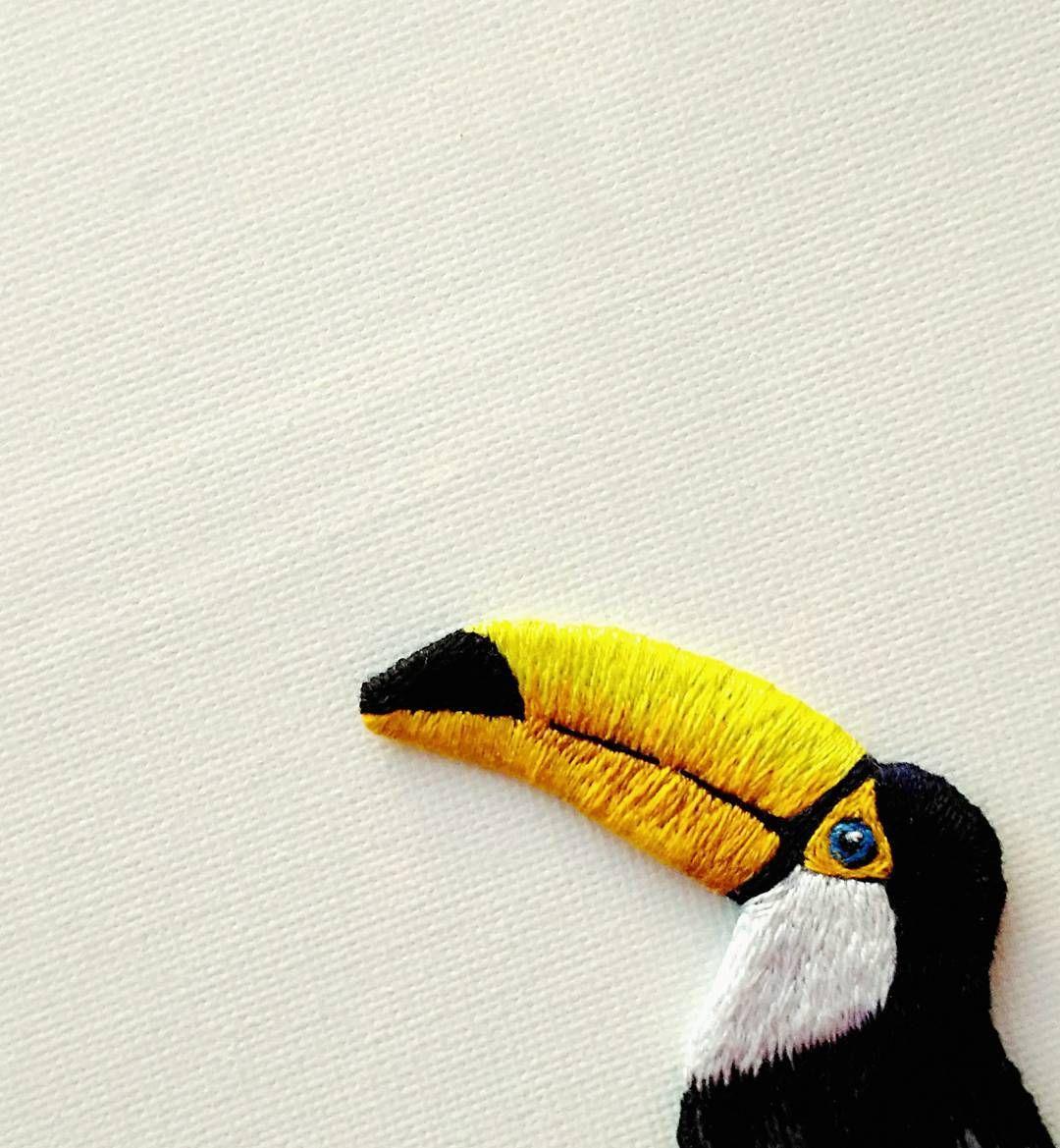 tucan embroidery brooch #Regram via @elena_polya_ | Stitchy things ...