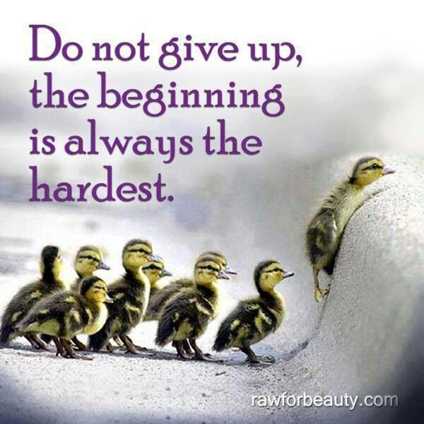 Determination Do Not Give Up The Beginning Is Always The