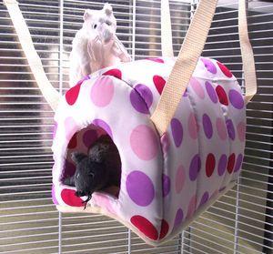 ferret rat degu igloo hanging hammock bed cage toy   various designs ferret rat degu igloo hanging hammock bed cage toy   various      rh   pinterest