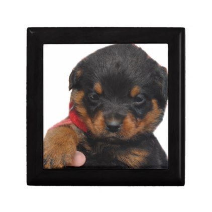 #Rottweiler Puppy Red Gift Box - #rottweiler #puppy #rottweilers #dog #dogs #pet #pets #cute