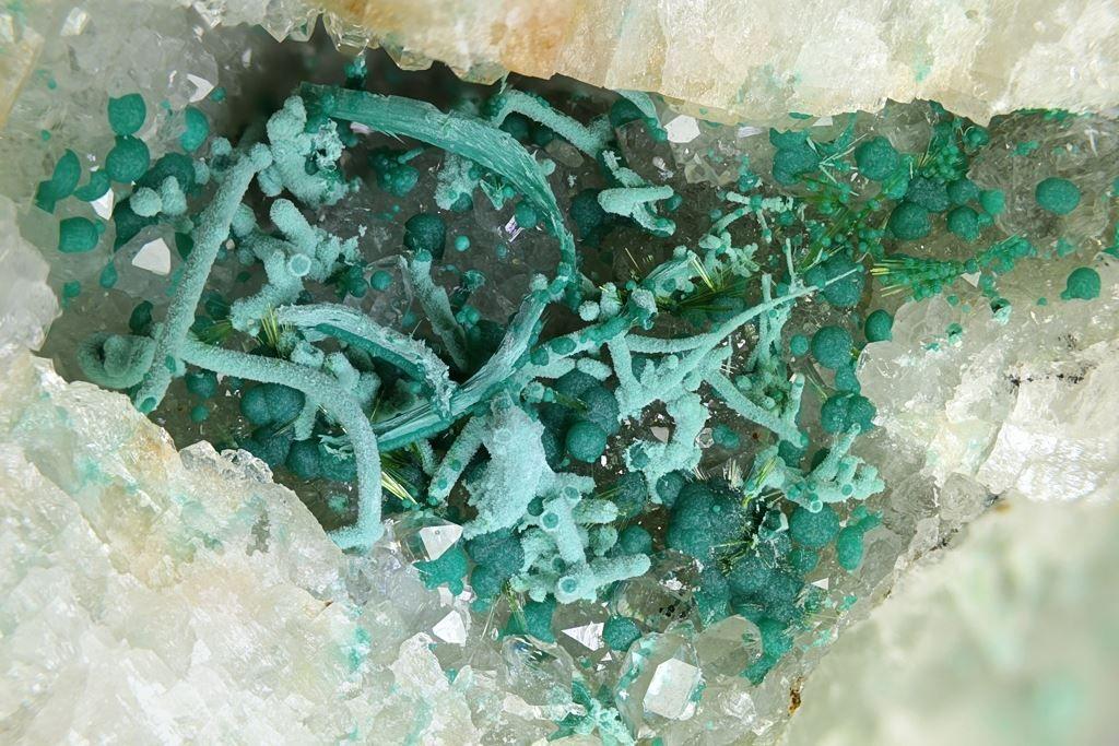 Cornwallite, Cu5(AsO4)2(OH) 4, malachite, agardite-(Ce), Clara Mine, Rankach valley, Oberwolfach, Wolfach, Black Forest, Baden-Württemberg, Germany. FOV=10.87 mm. Photo © Michael Förch