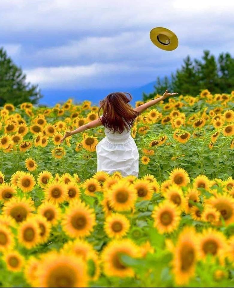 صباح الخير استمتع بكل لحظة فى حياتك لا تؤجل الفرح ولا تؤخ ر السعادة فالأيام التي تمضي لن تعود Summer