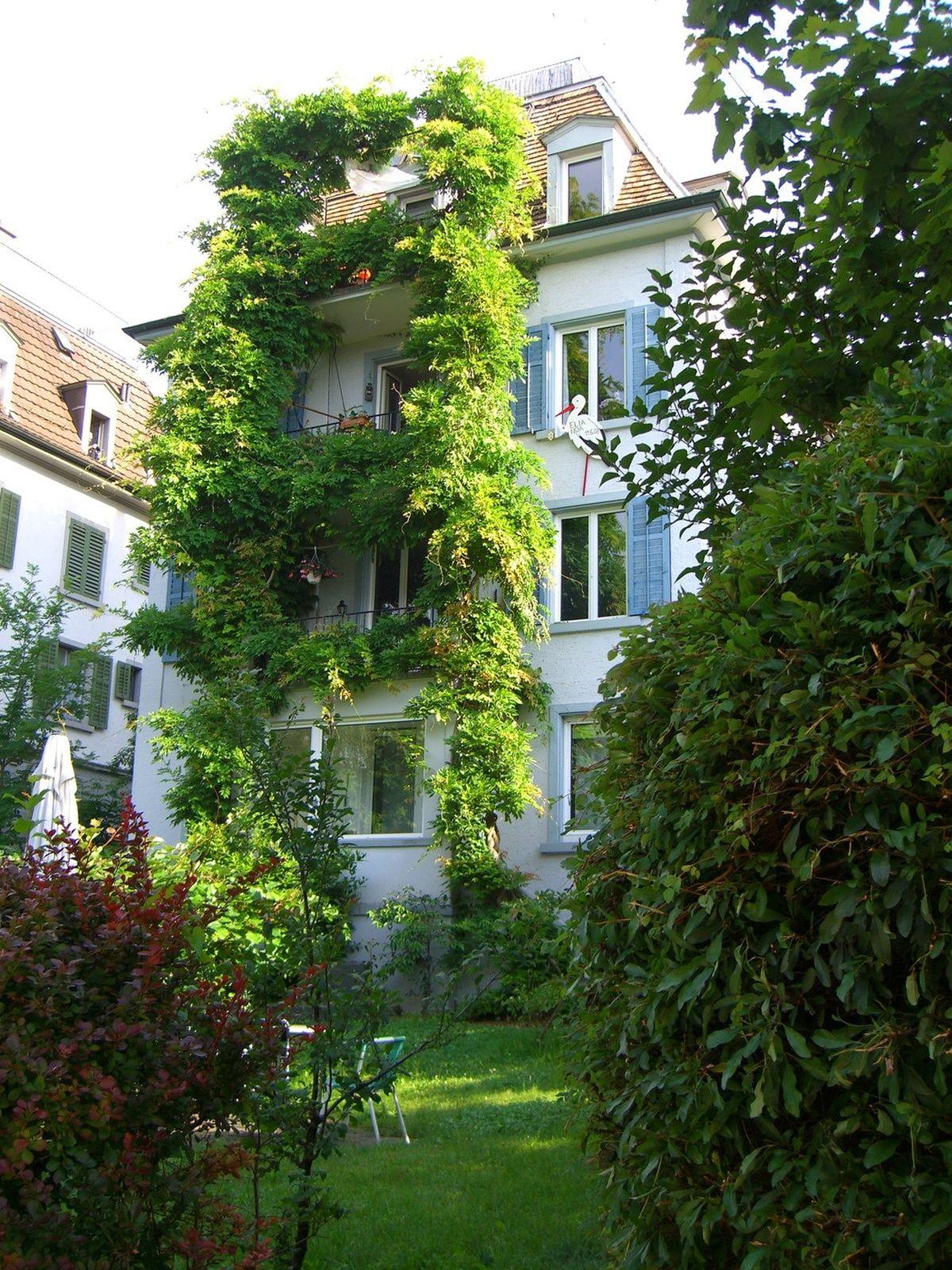 3 Rooms 55m 8052 Zurich Flatfox Wohnung Mieten Wohnideen Wohnung