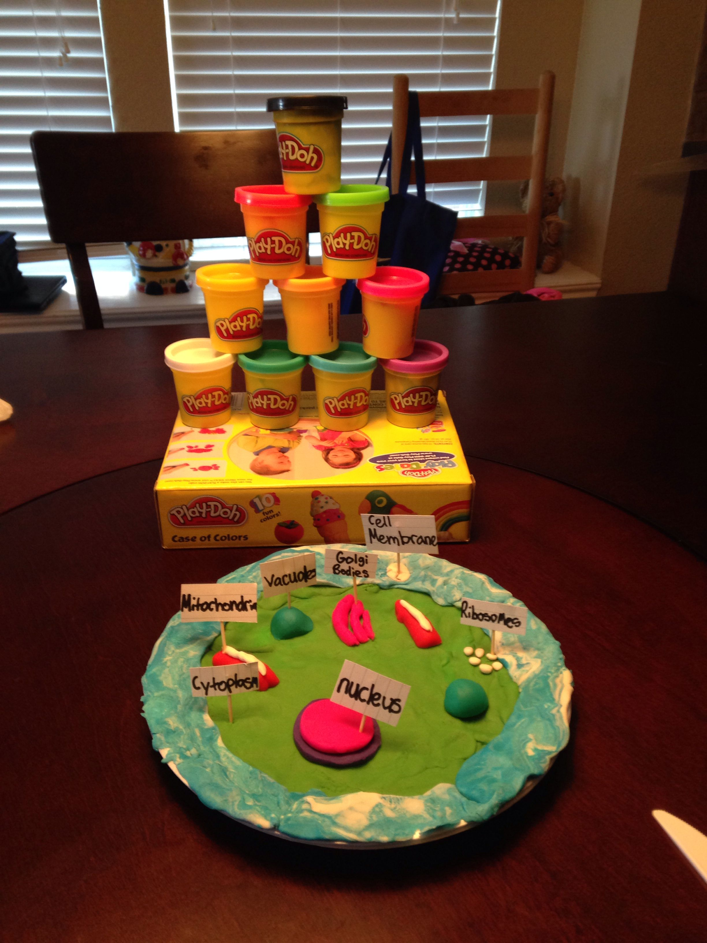 i made this 3d cell of a animal cell using these play-doh the only
