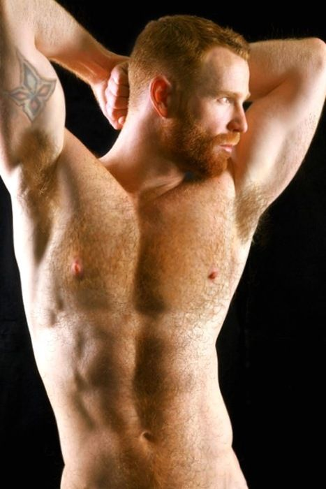 gay dennis Hairy ginger west