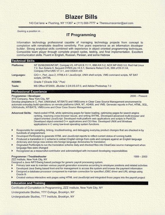 Computer Programmer Resume Example  Resume Examples And Sample Resume