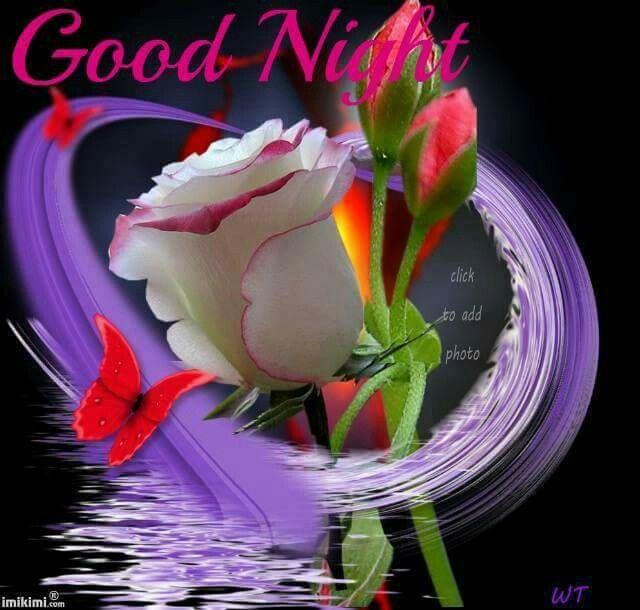 Good Night!   Blommor, Gif, Hjärta