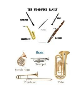 instruments-of-the-orchestra-1097017 Teaching Resources - TeachersPayTeachers.com