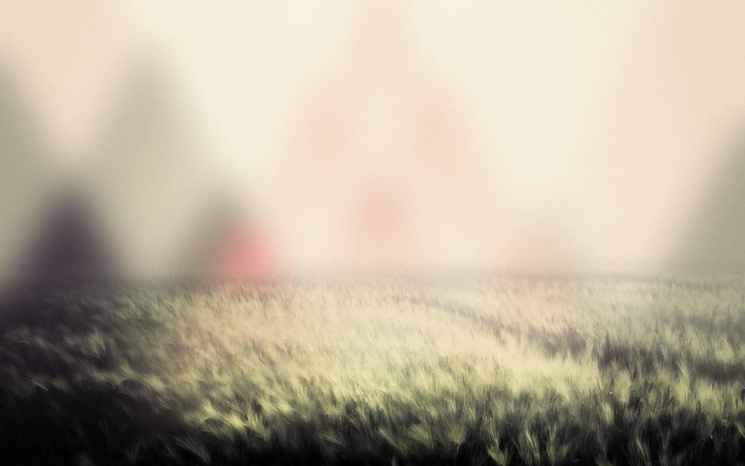 Best Wallpaper Mountain Blurry - 7b0b0a7e8d71b2fbe29c48e540248bda  Image_906410.jpg