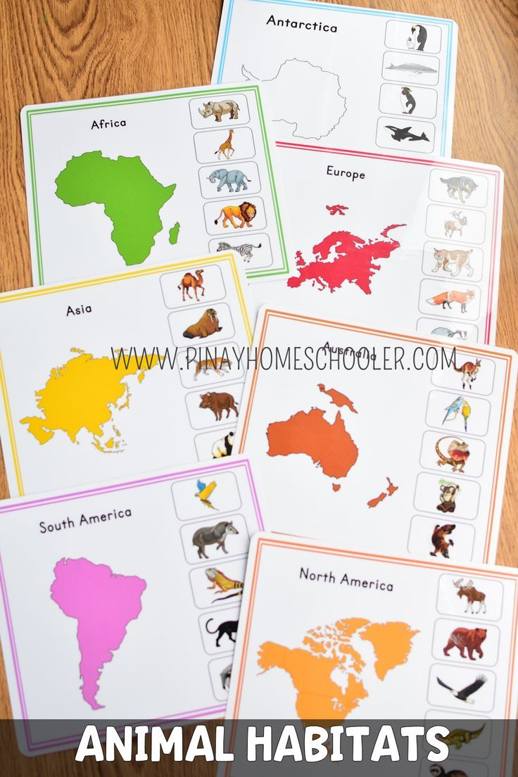Montessori Animal Continents Activity Sheets Continents