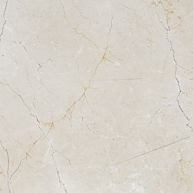 Crema Marfil Polished Marble Tiles 24x24 Country Floors Of America Llc Polished Marble Tiles Marble Tiles Marble