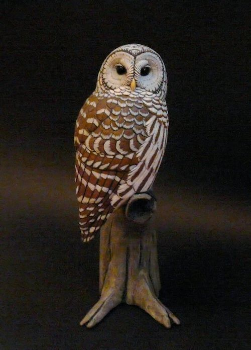 Barred owl tupulo wood carving tim mceachern bird art