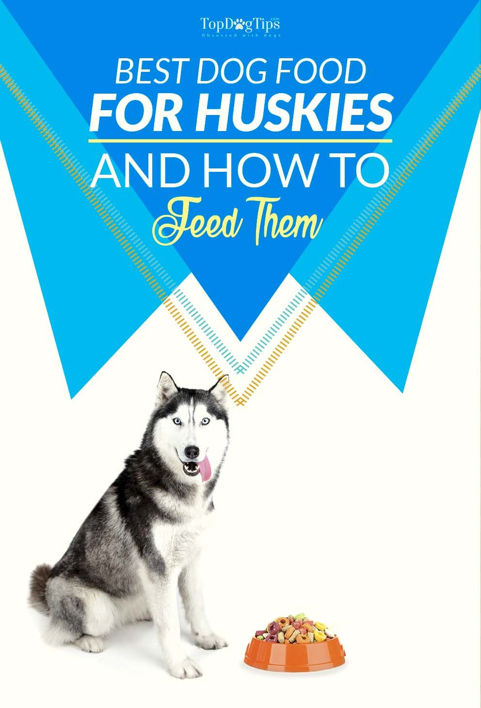Best Dog Food For Huskies In 2020 The 5 Vet Recommended Brands