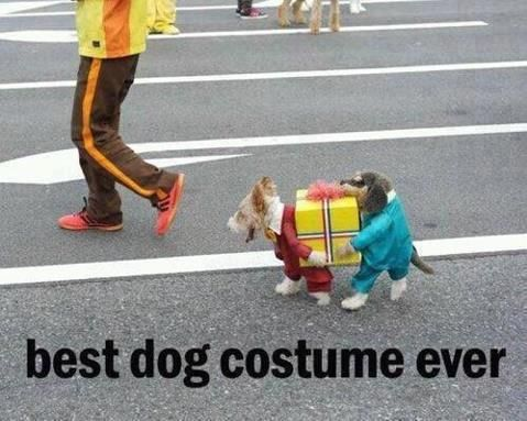 Doggie costume -- could also work for delivery men or construction workers.