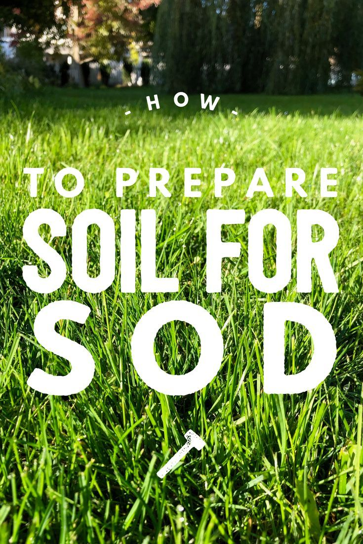 How To Prepare Soil For Sod Steps To Take Before Laying Sod For An Awesome Lawn Garden Soil Preparation Sod Grass Sod Installation