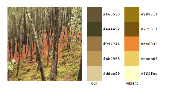 color palette generated from http://www.flickr.com/photos/22209194@N03/4086730006/sizes/o/ using http://www.degraeve.com/color-palette/