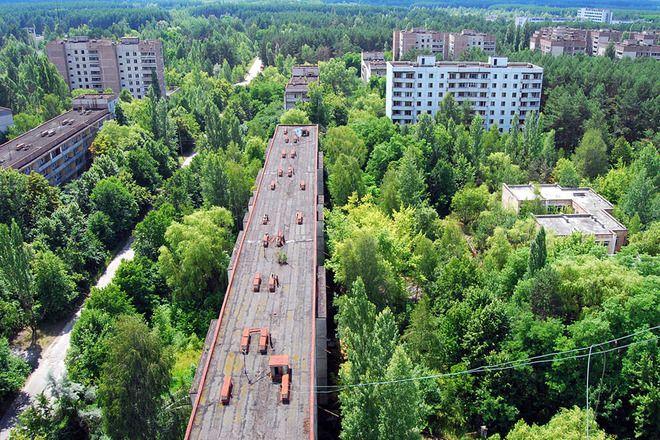 http://blog.nakatanigo.net/nature/nature-reclaiming-civilization