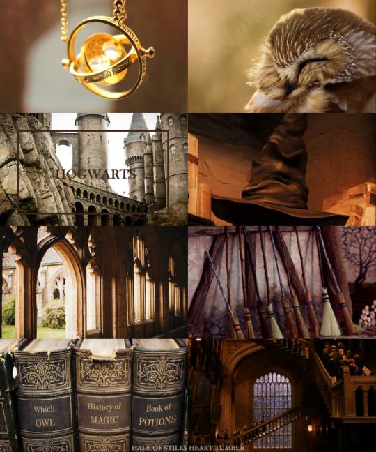 Wizarding Schools Aesthetics Hogwarts School Of Witchcraft And Wizardry The British Wizarding School Located In Hogwarts Aesthetic Hogwarts Hogwarts School
