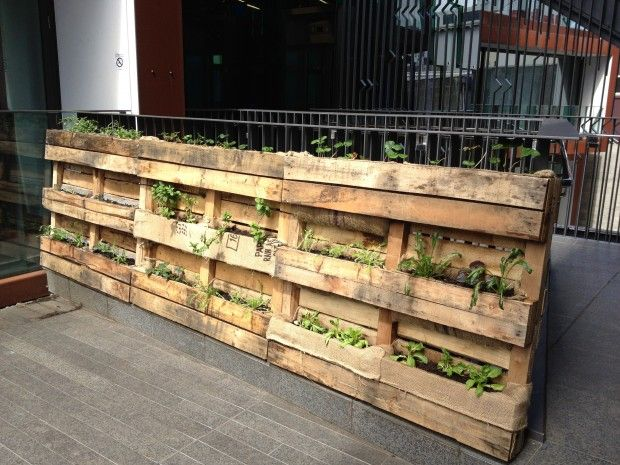 Crates As Planter Boxes Skid Gardening You Have To Be