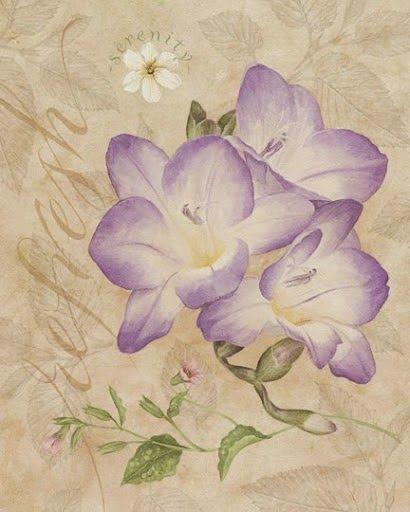 Laminas Con Flores Para Imprimir Imagenes Y Dibujos Para Imprimir Imagens Vintage Decupagem Arte