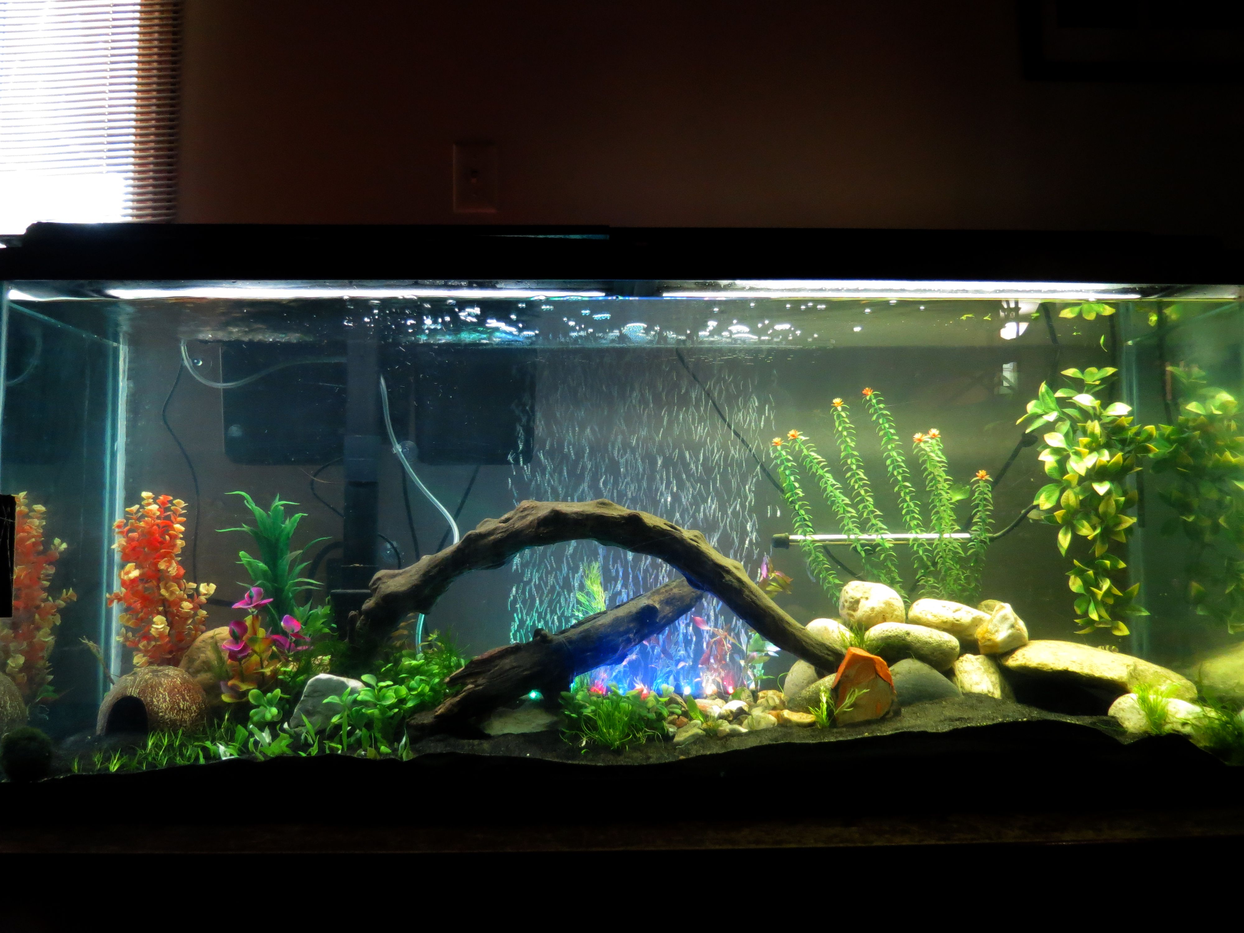 pu flatback images full lighting area stand ideas fish light freshwater hood of gallon tank hex aquarium for led magnificent and size
