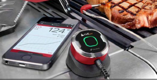 iPhone connected grill thermometer with a dumb name is still pretty cool - iGrill Mini