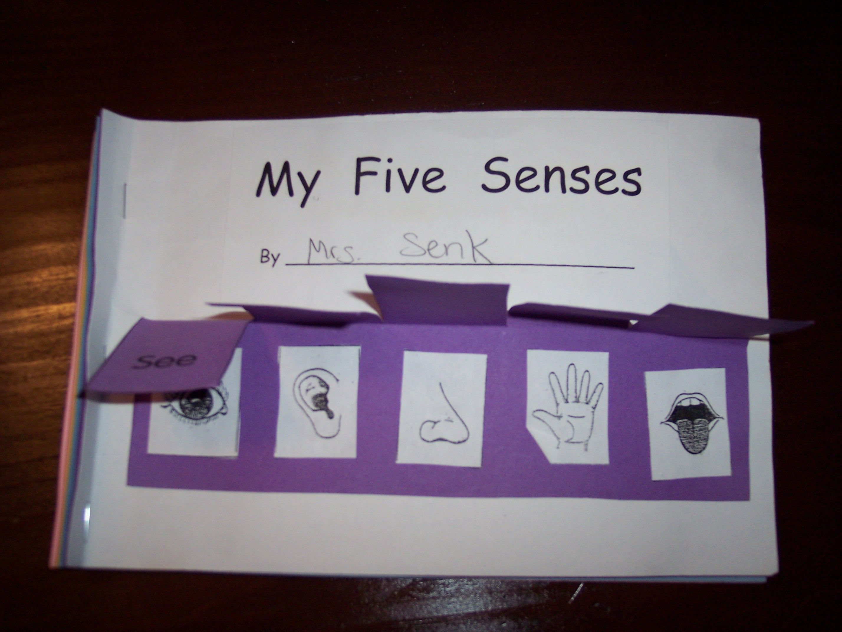 My Five Senses With Images