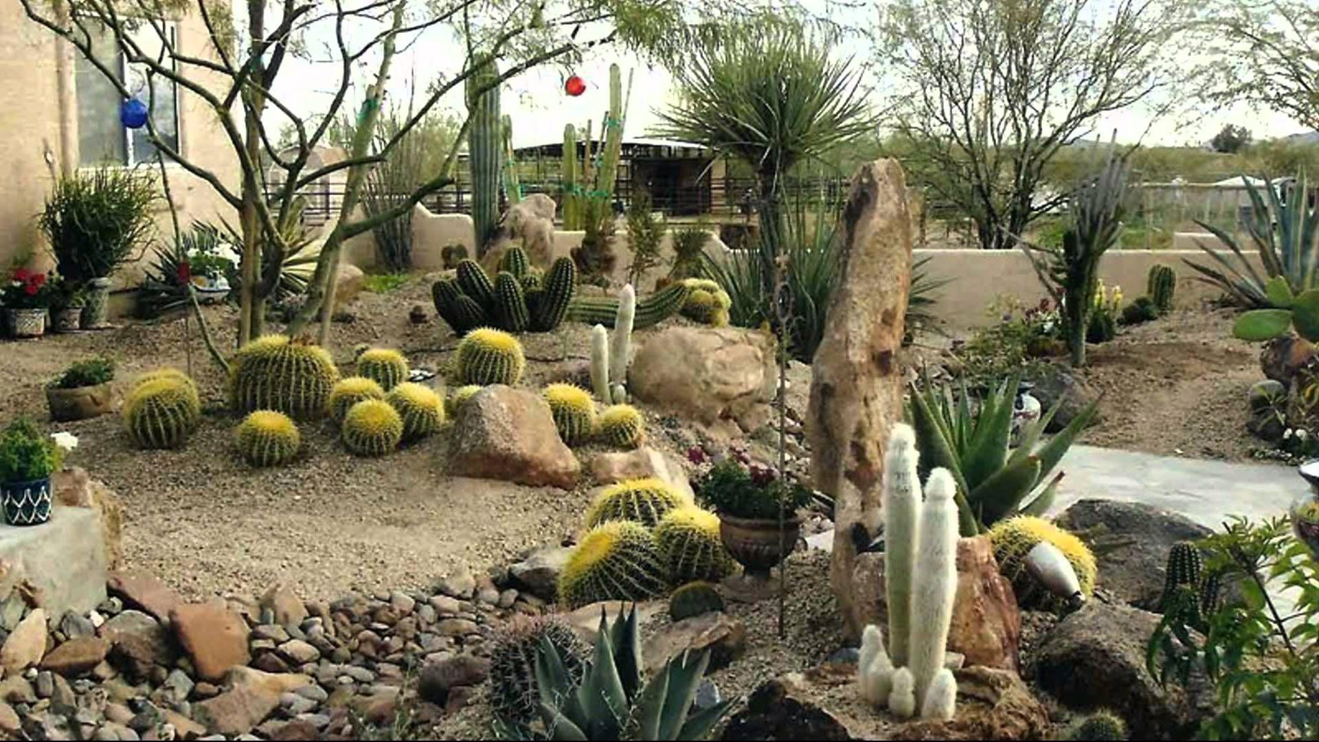 Awesome Desert Landscaping Ideas Youtube Regarding Desert 640 x 480