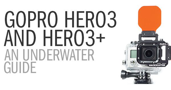 GoPro Shooting Guide For Underwater Videography