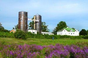 The North S Bride Topsfield Ma Alfalfa Farm Wedding