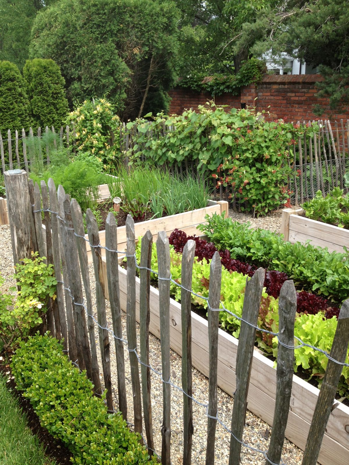 Vegetable garden inspiration screen fences jardins potager en jardin potager for Potagers sureleves