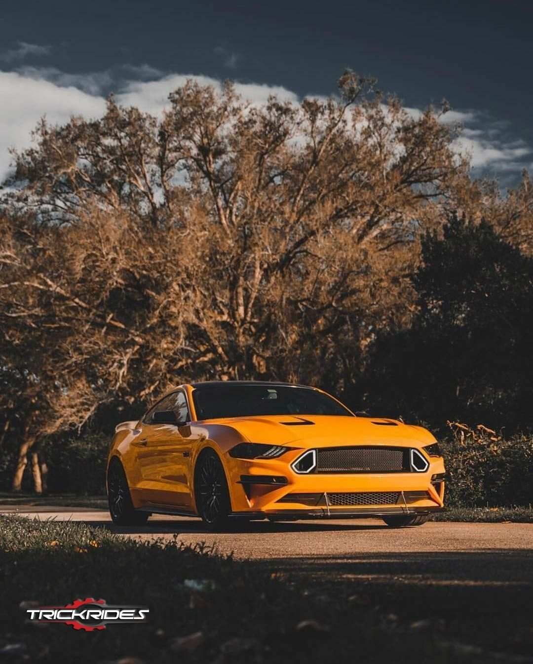 Ford Mustang Yellow Gtr Cars Hd Wallpapers Thewallpaper Net Gtr Car Car Hd Wallpaper Car Hd
