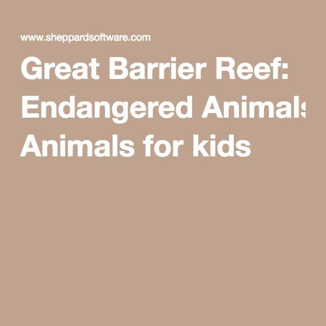 Great Barrier Reef: Endangered Animals For Kids