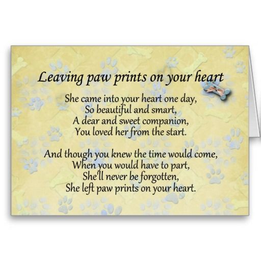 Sympathy Messages For Cards For Loss Of Father Sympathy Quotes Pet Sympathy Quotes Words For Sympathy Card