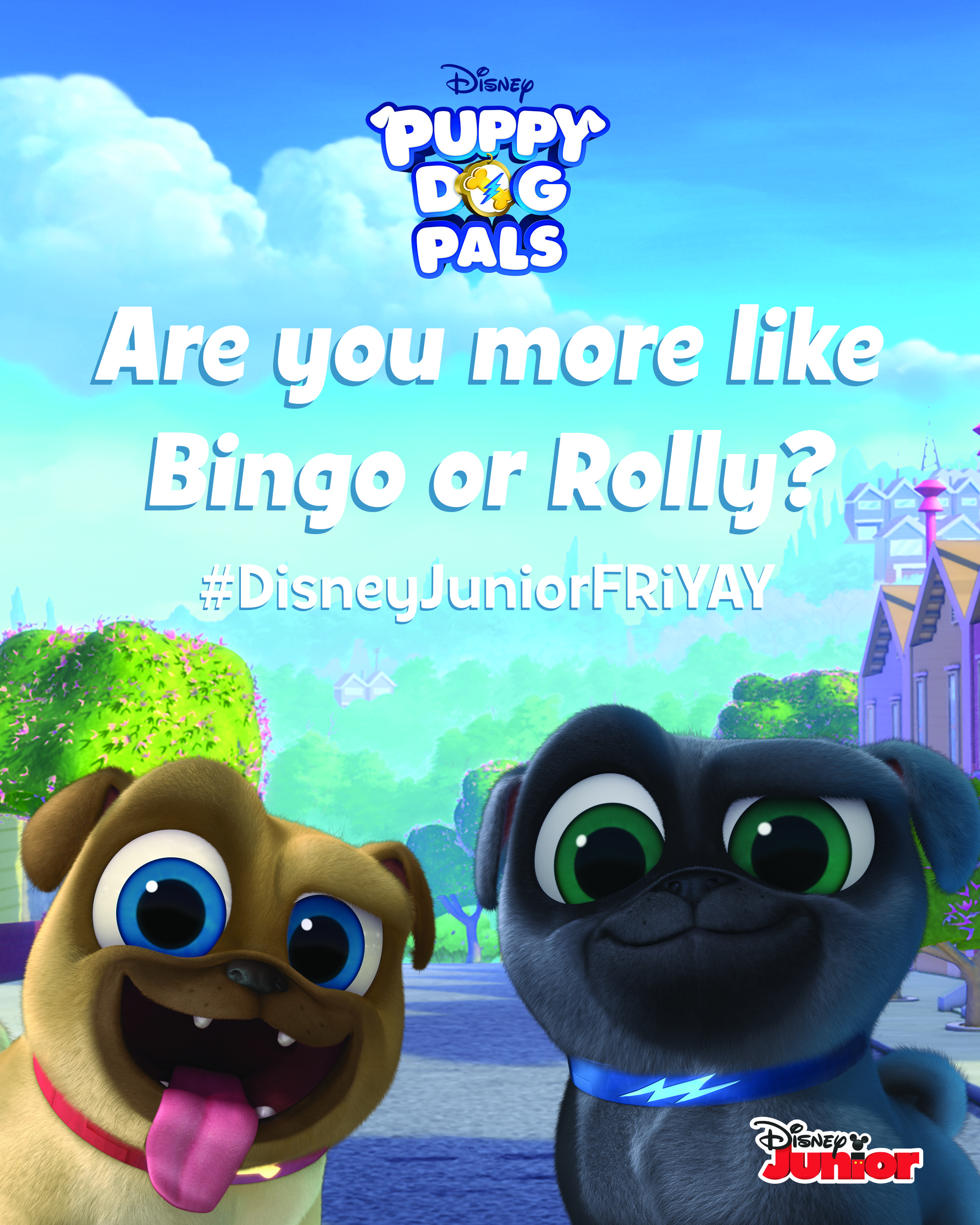 Are You More Like Bingo Or Rolly Print This Mini Poster And