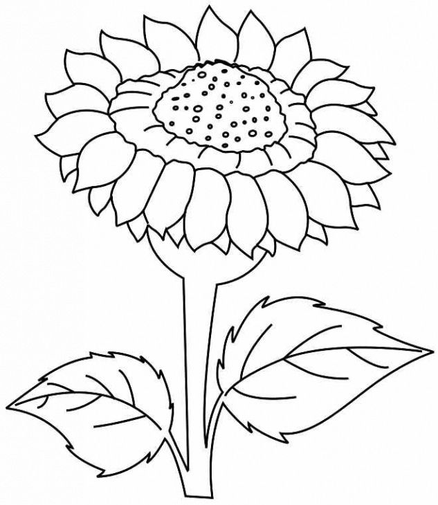 25 Flower Coloring Pages To Color Sunflower Coloring Pages